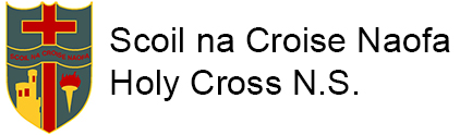 Holy Cross Cork National School Logo